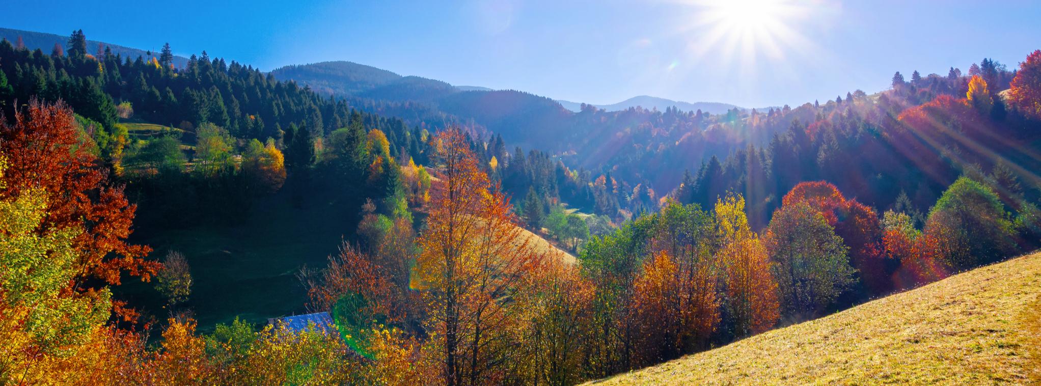 Autumnal Mountain Foliage